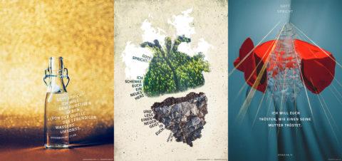 50% Rabatt auf die Postkarten der Jahreslosung 2018, 2017 und 2016