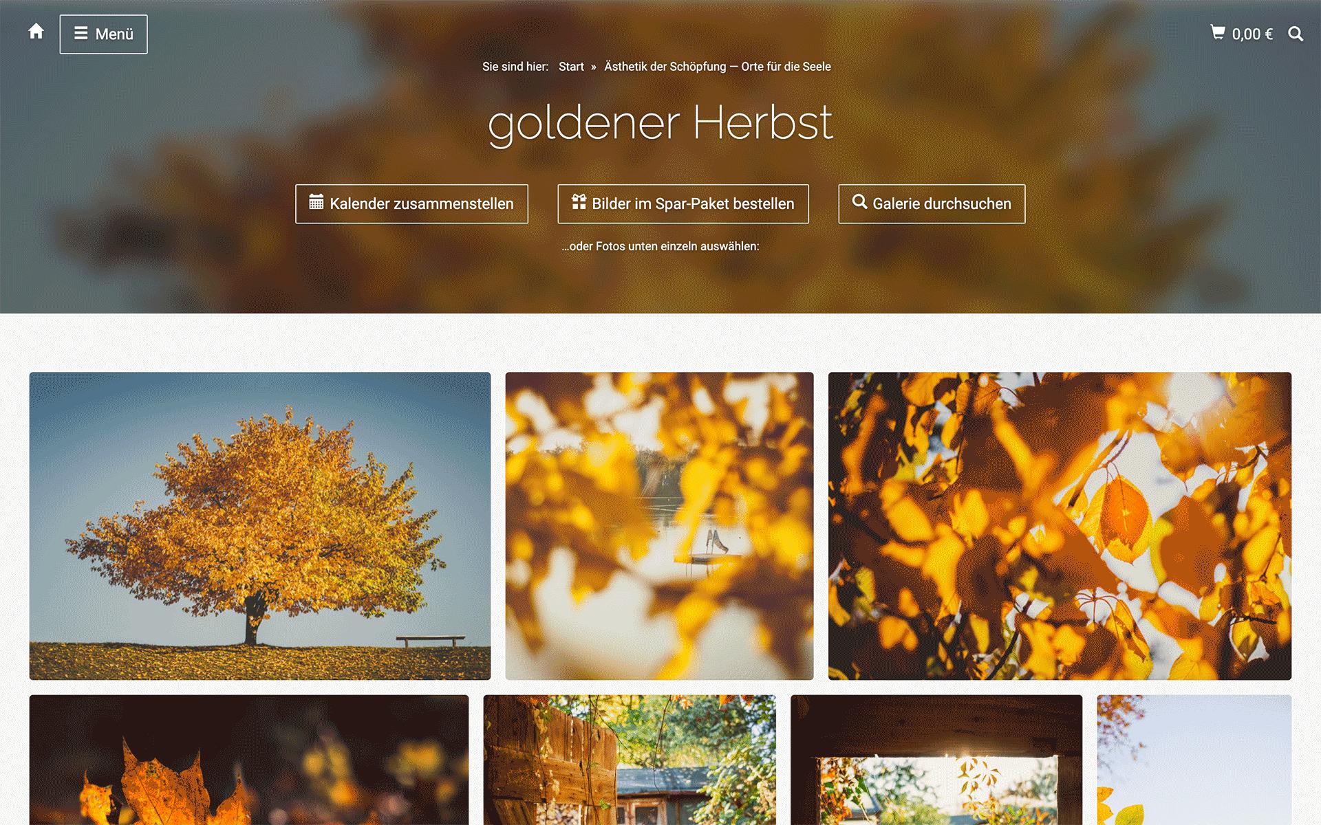 undarstellbar.com Shop Ästhetik der Schöpfung – Orte für die Seele – goldener Herbst